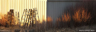 Willows, ladders and steel